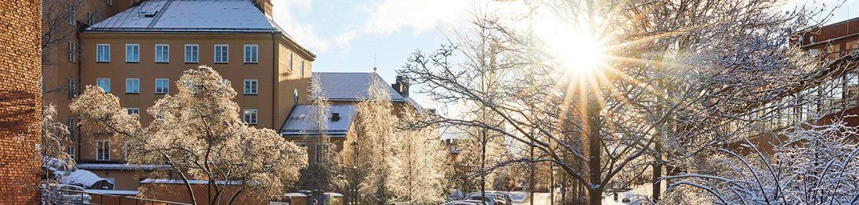Vinter_brinellvägen.jpg