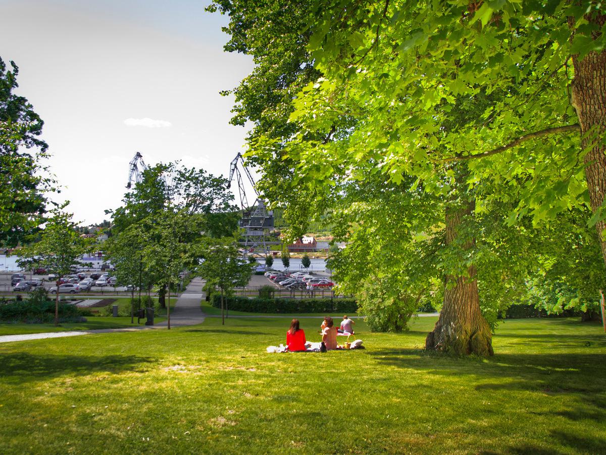 Stadsträdgården.jpg